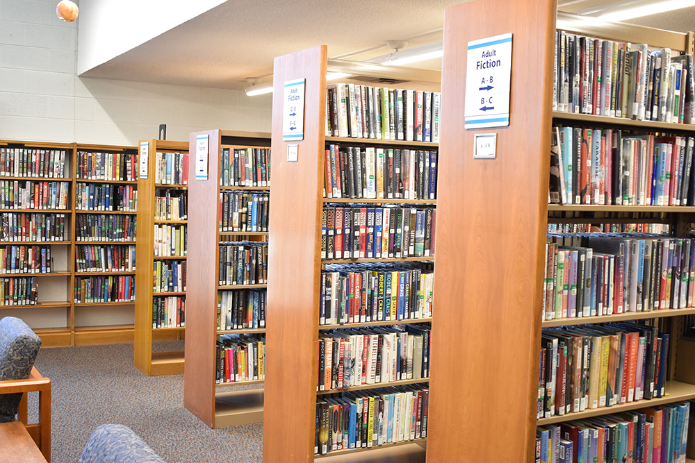 adult fiction book selection